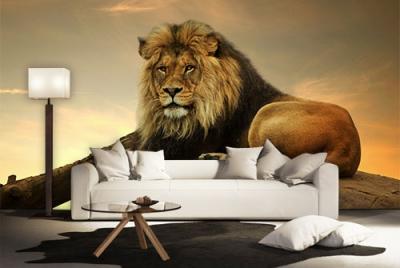 c-_users_boki_desktop_gradovi_amazing-paint-home-interior-wonderful-decoration-ideas-amazing-simple-at-paint-home-intedrior-home-interior-ideas