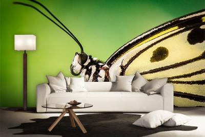 c-_users_boki_desktop_gradovi_amazing-paint-home-interior-wonderful-decoration-ideas-amazing-simple-at-paint-home-interioddr-home-interior-ideas