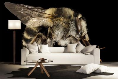c-_users_boki_desktop_gradovi_amazing-paint-home-interior-wonderful-decoration-ideas-amazing-simple-at-paint-home-interior-ddhome-interior-ideas