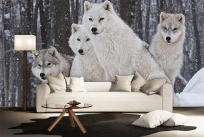 c-_users_boki_desktop_gradovi_amazing-paint-home-interior-wonderful-decoration-ideas-amazing-simple-at-paint-home-interior-ggome-interior-ideas