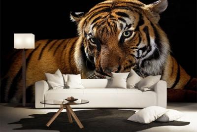 c-_users_boki_desktop_gradovi_amazing-paint-home-interior-wonderful-decoration-ideas-amazing-simple-at-paint-home-interior-hodddme-interior-ideas