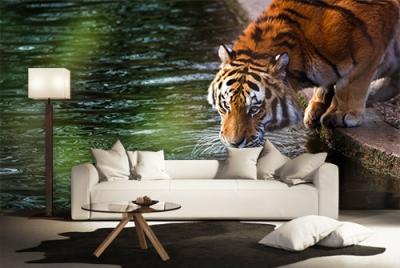 c-_users_boki_desktop_gradovi_amazing-paint-home-interior-wonderful-decoration-ideas-amazing-simple-at-paint-home-interior-home-inhterior-ideas