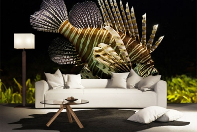 c-_users_boki_desktop_gradovi_amazing-paint-home-interior-wonderful-decoration-ideas-amazing-simple-at-paint-home-interior-home-int-vverior-ideas