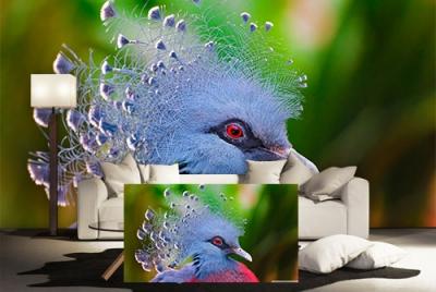 c-_users_boki_desktop_gradovi_amazing-paint-home-interior-wonderful-decoration-ideas-amazing-simple-at-paint-home-interior-home-interiodddr-ideas