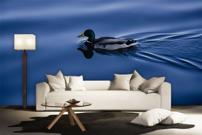 c-_users_boki_desktop_gradovi_amazing-paint-home-interior-wonderful-decoration-ideas-amazing-simple-at-paint-home-interior-home-interior-ccideas