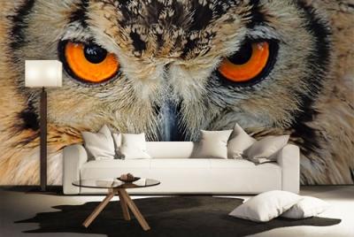 c-_users_boki_desktop_gradovi_amazing-paint-home-interior-wonderful-decoration-ideas-amazing-simple-at-paint-home-interior-home-interior-idevas