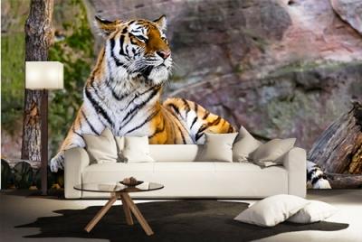 c-_users_boki_desktop_gradovi_amazing-paint-home-interior-wonderful-decoration-ideas-amazing-simple-at-paint-home-interior-home-interior-ixxdeas