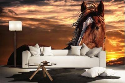 c-_users_boki_desktop_gradovi_amazing-paint-home-interior-wonderful-decoration-ideas-amazing-simple-at-paint-home-interior-home-interiordd-ideas