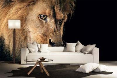 c-_users_boki_desktop_gradovi_amazing-paint-home-interior-wonderful-decoration-ideas-amazing-simple-at-paint-home-interior-home-interiosr-ideas