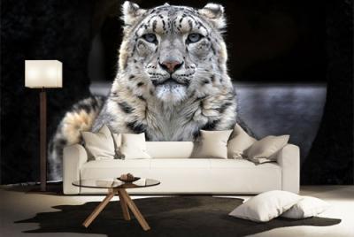 c-_users_boki_desktop_gradovi_amazing-paint-home-interior-wonderful-decoration-ideas-amazing-simple-at-paint-home-interior-home-interirrror-ideas