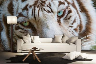 c-_users_boki_desktop_gradovi_amazing-paint-home-interior-wonderful-decoration-ideas-amazing-simple-at-paint-home-interior-home-interisor-ideas