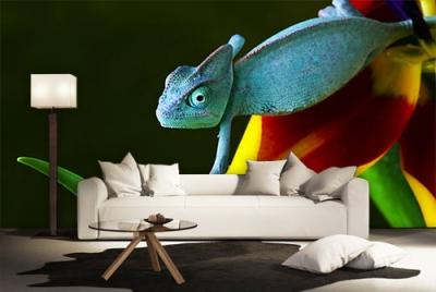 c-_users_boki_desktop_gradovi_amazing-paint-home-interior-wonderful-decoration-ideas-amazing-simple-at-paint-home-interior-home-interiwwor-ideas