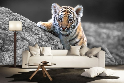 c-_users_boki_desktop_gradovi_amazing-paint-home-interior-wonderful-decoration-ideas-amazing-simple-at-paint-home-interior-home-intersior-ideas