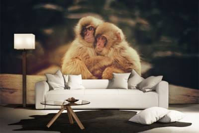 c-_users_boki_desktop_gradovi_amazing-paint-home-interior-wonderful-decoration-ideas-amazing-simple-at-paint-home-interior-home-interxxixor-ideas