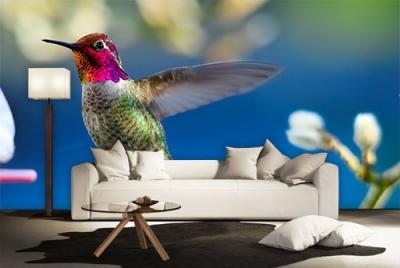 c-_users_boki_desktop_gradovi_amazing-paint-home-interior-wonderful-decoration-ideas-amazing-simple-at-paint-home-interior-home-intvverior-ideas
