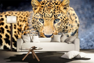 c-_users_boki_desktop_gradovi_amazing-paint-home-interior-wonderful-decoration-ideas-amazing-simple-at-paint-home-interior-homeccc-interior-ideas