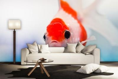 c-_users_boki_desktop_gradovi_amazing-paint-home-interior-wonderful-decoration-ideas-amazing-simple-at-paint-home-interior-homegh-interior-ideas