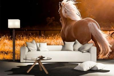 c-_users_boki_desktop_gradovi_amazing-paint-home-interior-wonderful-decoration-ideas-amazing-simple-at-paint-home-interior-homey-interior-ideas