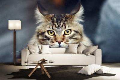 c-_users_boki_desktop_gradovi_amazing-paint-home-interior-wonderful-decoration-ideas-amazing-simple-at-paint-home-interior-homwe-interior-ideas