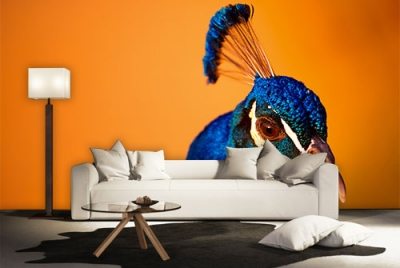 c-_users_boki_desktop_gradovi_amazing-paint-home-interior-wonderful-decoration-ideas-amazing-simple-at-paint-home-interior-homwxe-interior-ideas