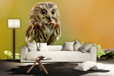 c-_users_boki_desktop_gradovi_amazing-paint-home-interior-wonderful-decoration-ideas-amazing-simple-at-paint-home-interior-homzzze-interior-ideas