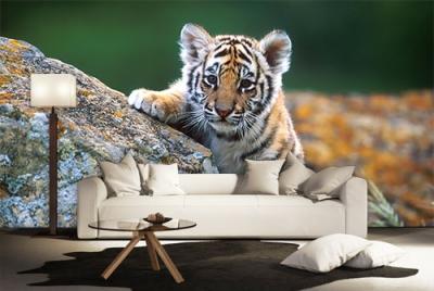 c-_users_boki_desktop_gradovi_amazing-paint-home-interior-wonderful-decoration-ideas-amazing-simple-at-paint-home-interior-houme-interior-ideas
