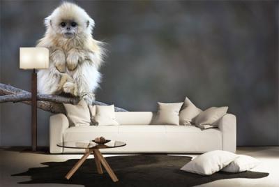 c-_users_boki_desktop_gradovi_amazing-paint-home-interior-wonderful-decoration-ideas-amazing-simple-at-paint-home-interior-hxome-interior-ideas
