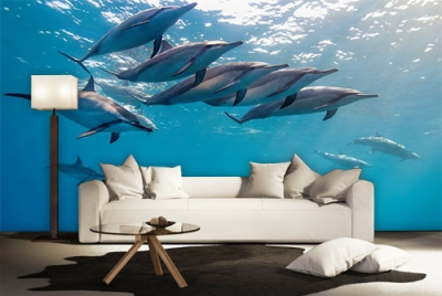 c-_users_boki_desktop_gradovi_amazing-paint-home-interior-wonderful-decoration-ideas-amazing-simple-at-paint-home-interiossr-home-interior-ideas