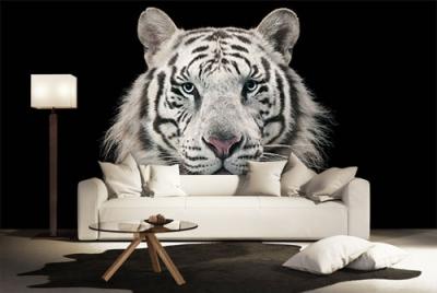 c-_users_boki_desktop_gradovi_amazing-paint-home-interior-wonderful-decoration-ideas-amazing-simple-at-paint-homue-interior-home-interior-ideas