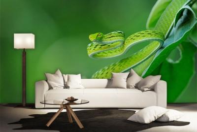 c-_users_boki_desktop_gradovi_amazing-paint-home-interior-wonderful-decoration-ideas-amazing-simple-at-paint-hxome-interior-home-interior-ideas